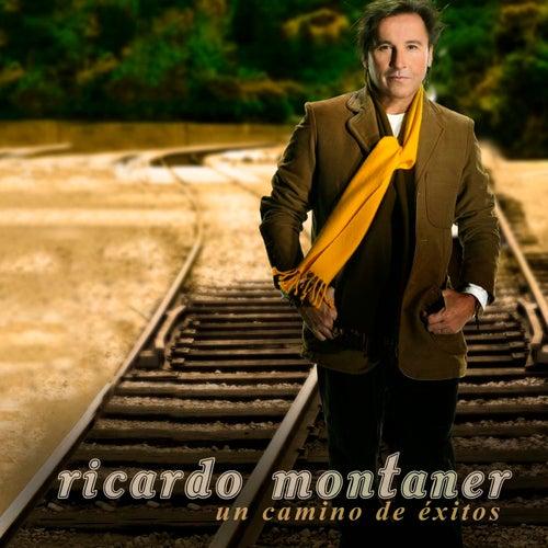Un Camino De Exitos de Ricardo Montaner