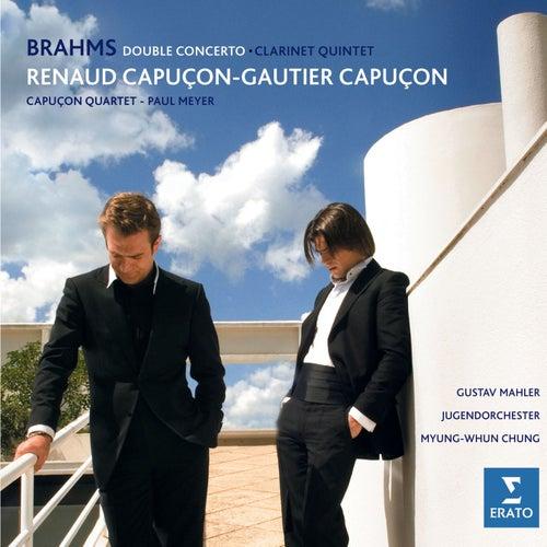 Brahms: Double Concerto & Clarinet Quintet, Op.115 by Paul Meyer