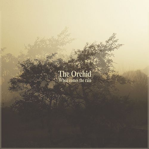 When Comes the Rain by The Orchid
