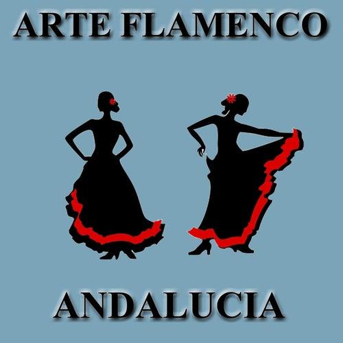 Arte Flamenco: Andalucía by Various Artists