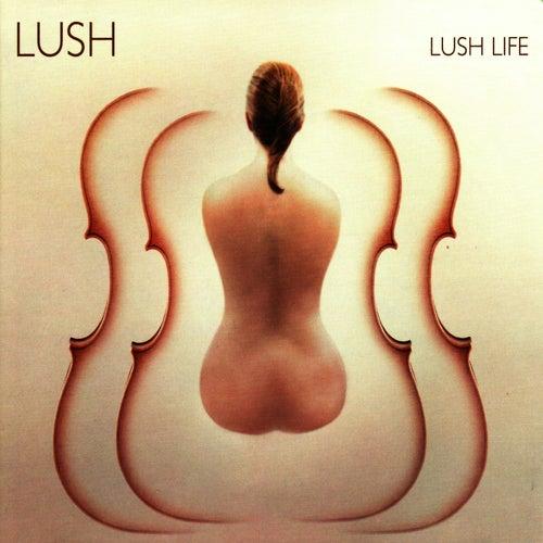 Lush Life de Lush