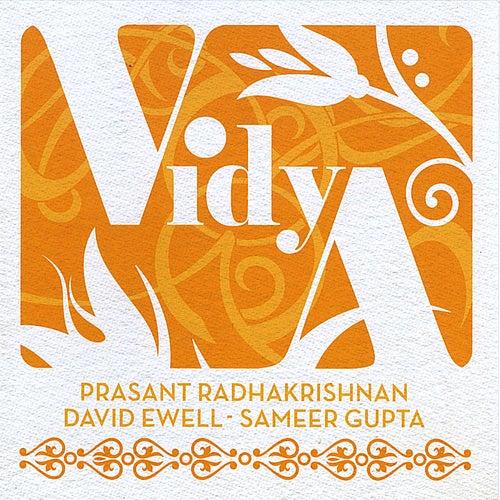 Vidya by Vidya