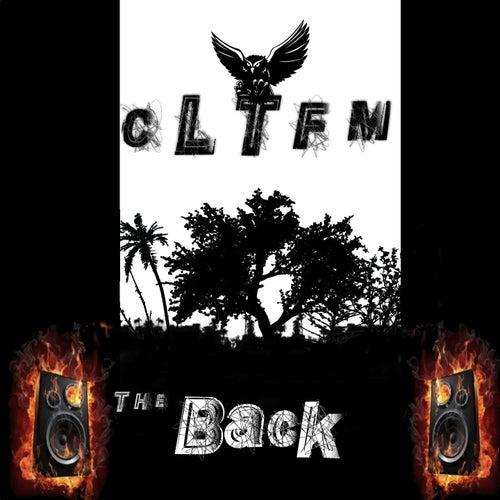 Cltfm the Back de Various Artists