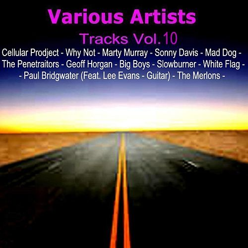 Tracks Vol. 10 von Various Artists