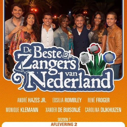 De Beste Zangers van Nederland Seizoen 7 (Aflevering 2) by Various Artists