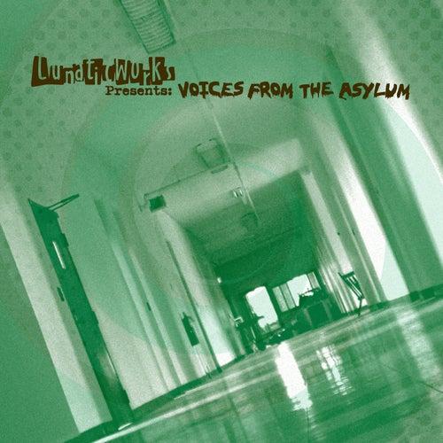 Lunaticworks Presents: Voices from the Asylum de Various Artists