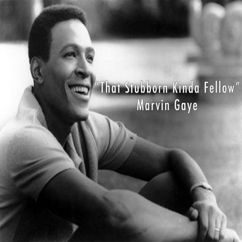 That Stubborn Kinda Fellow - Marvin Gaye by Marvin Gaye