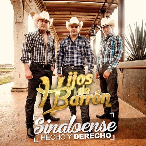 Sinaloense Hecho Y Derecho by Hijos De Barron