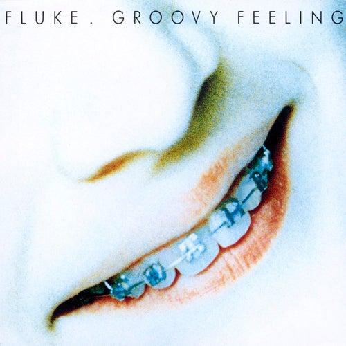 Groovy Feeling von Fluke