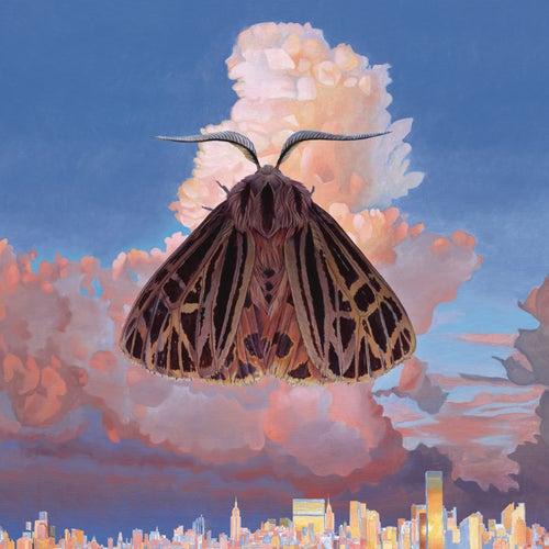 Moth von Chairlift