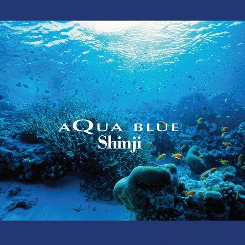 Aqua Blue de Shinji Ishihara