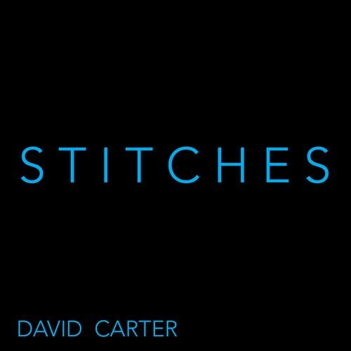 Stitches von David Carter