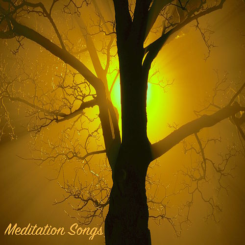 Meditation Songs for Relaxing Moments at Spa - Sounds for Body Massage, Intense Relaxation, Yoga Lessons by Sauna Relax Music Rec