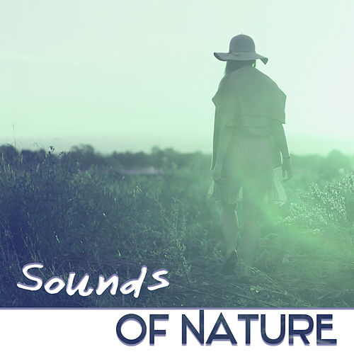 Sounds Of Nature – Music for Relaxation &    by Sleep Meditation