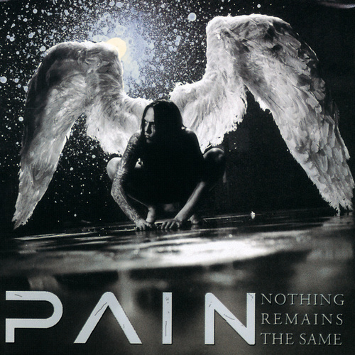 Nothing Remains The Same de Pain