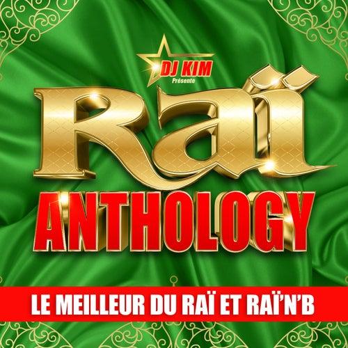 Raï Anthology by DJ Kim: Le Meilleur du Raï et Raï'n'B de Various Artists