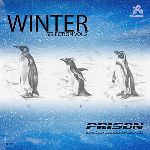 Winter Selection, Vol. 2 - EP von Various Artists