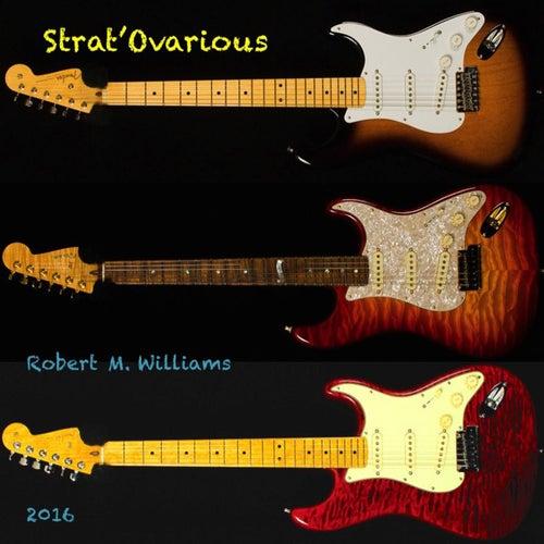 Strat'ovarious von Robert M. Williams