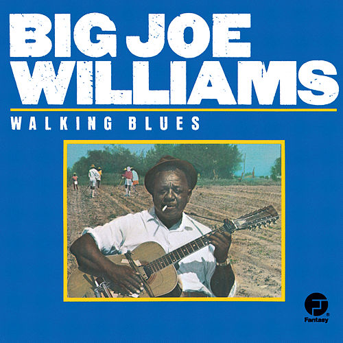 Walking Blues de Big Joe Williams