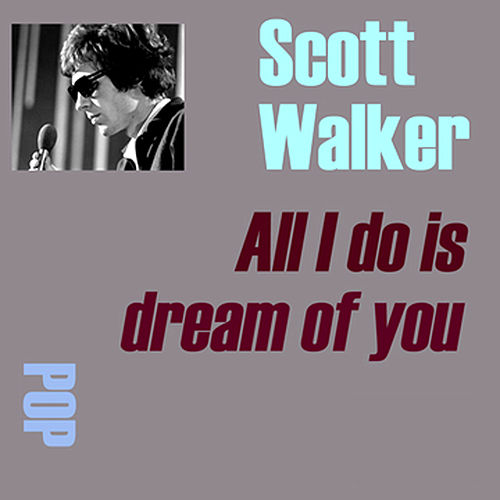 All I Do Is Dream Of You by Scott Walker