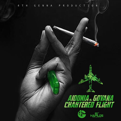 Chartered Flight - Single von Govana
