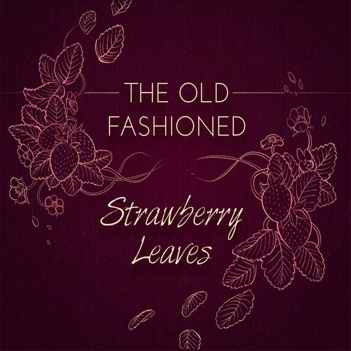 Strawberry Leaves de Old Fashioned