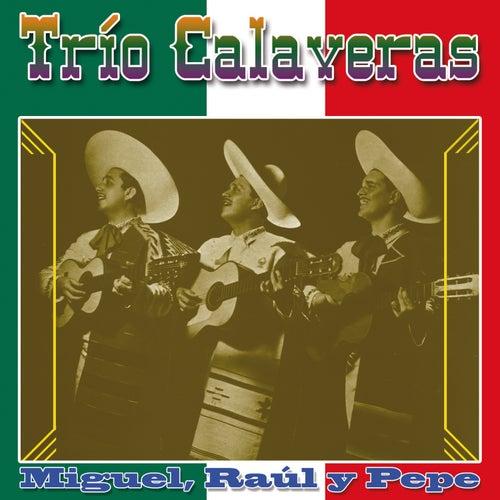 Trío Calaveras (Miguel-Raul-Pepe) by Trío Calaveras