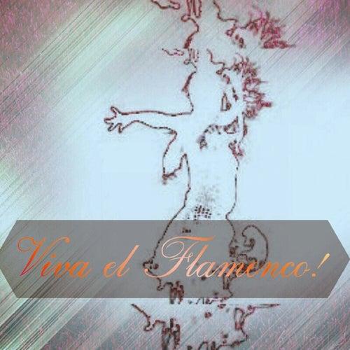 Viva el Flamenco! de Various Artists