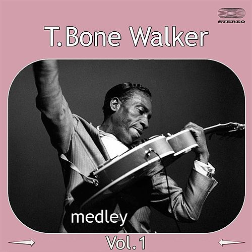 T-Bone Walker Medley 1: Travelin' Blues / I Miss You Baby /  Cold, Cold Feeling / Welcome Blues / Bye Bye Baby / I Got the Blues / You Don't Love Me / Here in the Dark de T-Bone Walker