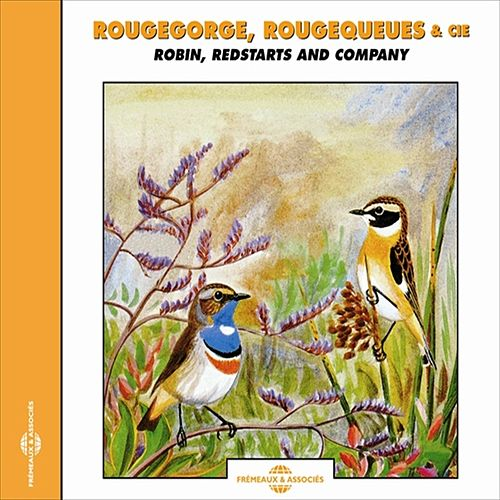 Rougegorge, Rougequeues - Robin, Redstarts & Co by Sounds Of Nature
