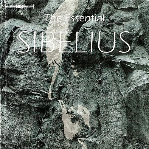 SIBELIUS (The Essential) by Various Artists