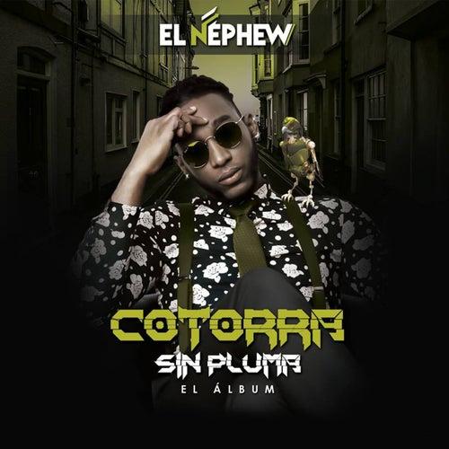Cotorra Sin Pluma by Nephew