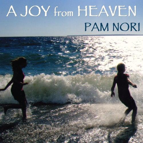 A Joy from Heaven by Pam Nori