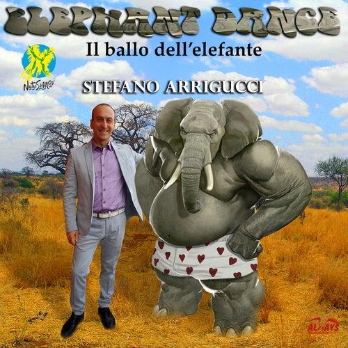 Elephant Dance (Natusamba) di Stefano Arrigucci