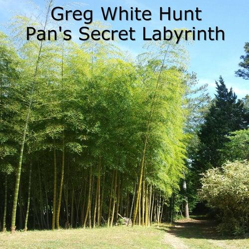 Pan's Secret Labyrinth by Greg White Hunt