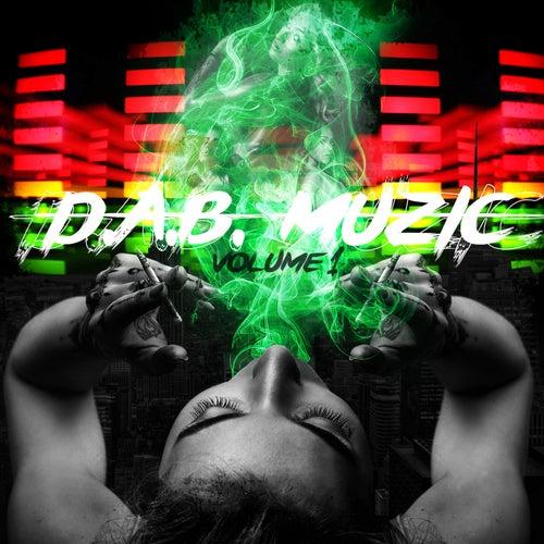 D.A.B. Muzic, Vol. 1 de Various Artists