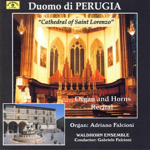 Organ and Horns Recital at Cathedral of Saint Lorenzo by Adriano Falcioni