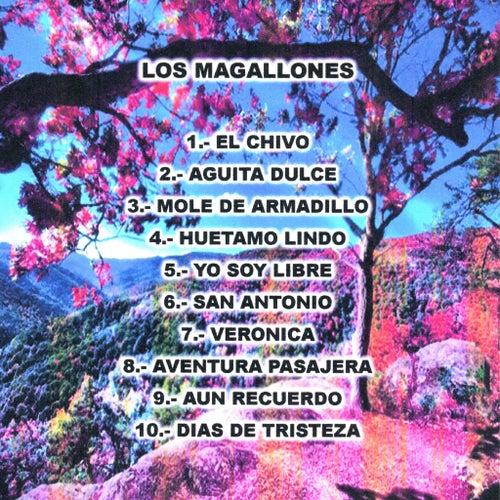 10 Canciones by Los Magallones