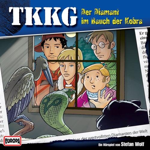 115/Der Diamant im Bauch der Kobra von TKKG
