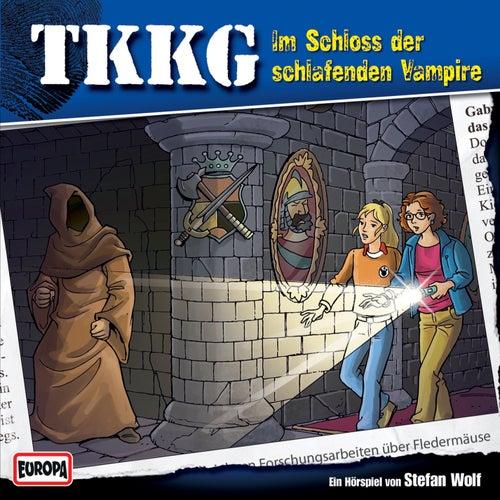 117/Im Schloß der schlafenden Vampire von TKKG