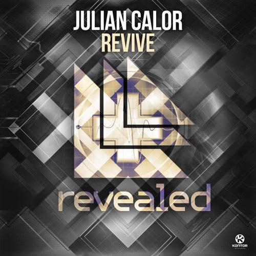 Revive von Julian Calor