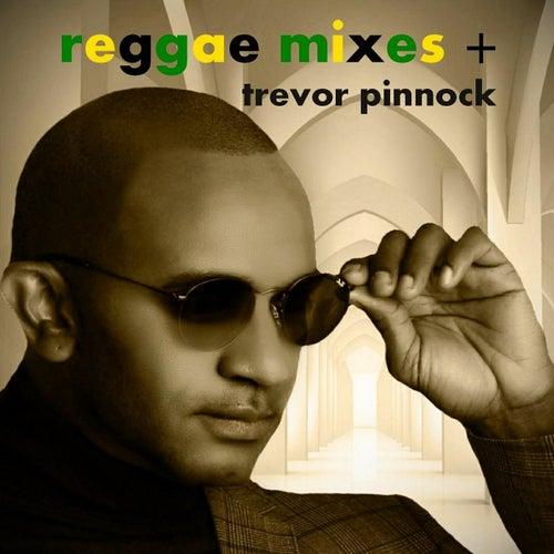 Reggae Mixes + de Trevor Pinnock