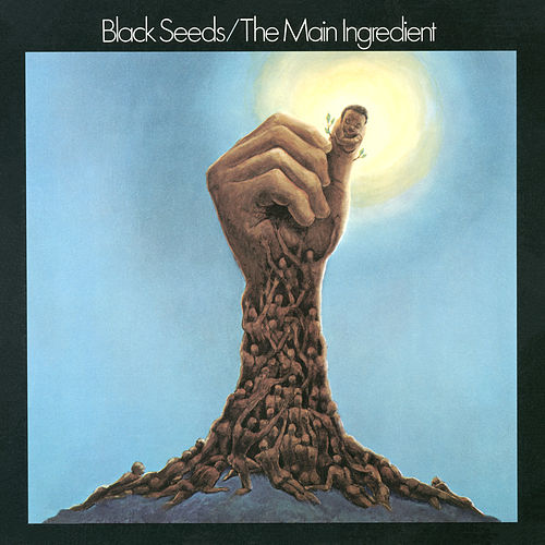 Black Seeds de The Main Ingredient