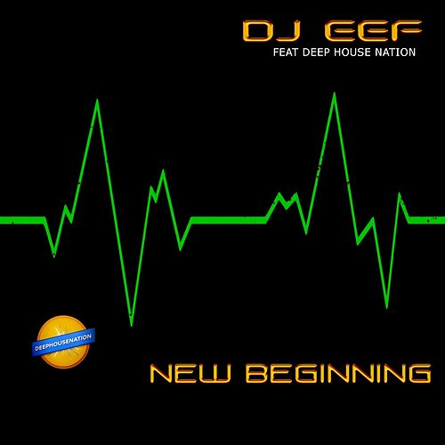 New Beginning de Various Artists