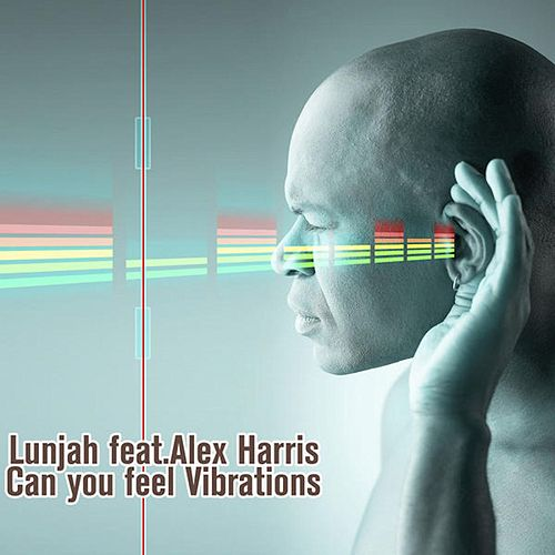 Can You Feel Vibrations (feat. Alex Harris) von Lunjha