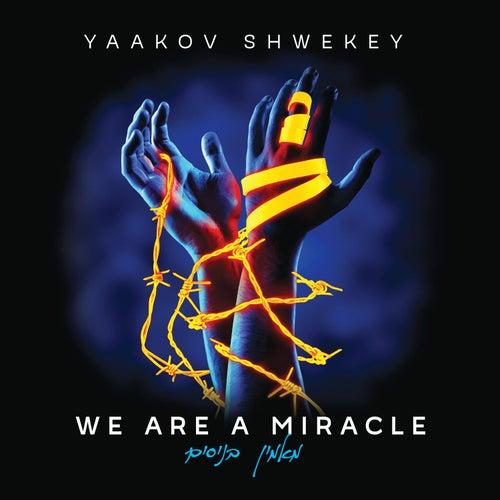 Inshallah by Yaakov Shwekey