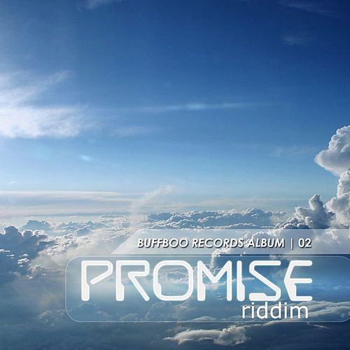 The Promise Riddim by Various Artists