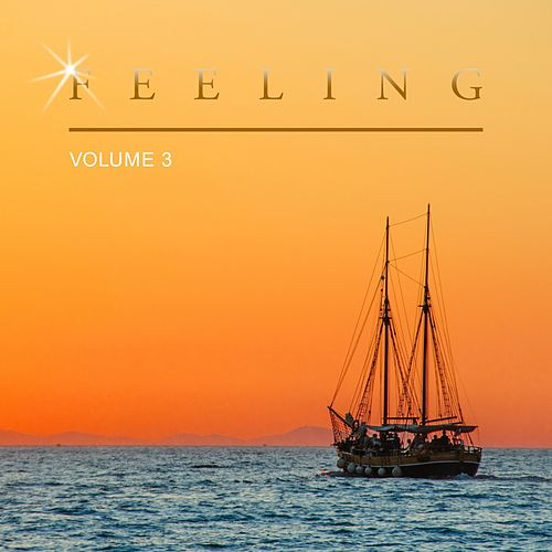 Feeling, Vol. 3 by Various Artists