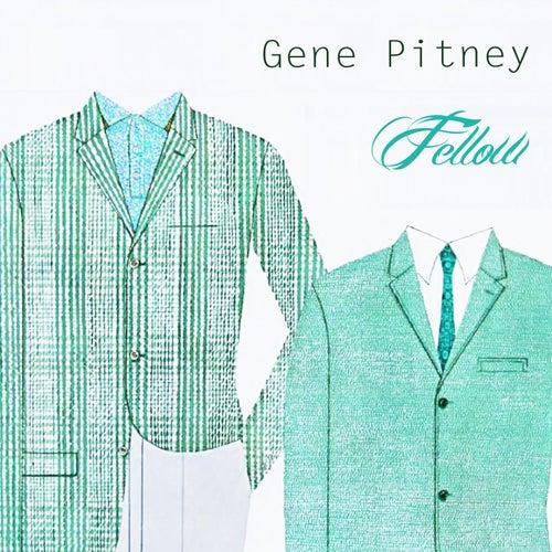 Fellow by Gene Pitney