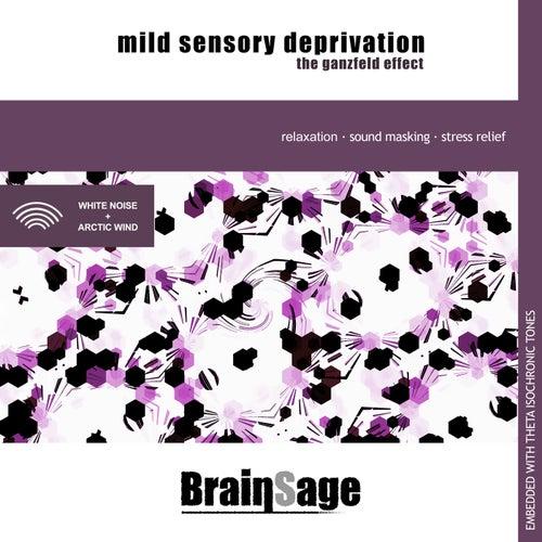 Mild Sensory Deprivation: The Ganzfeld Effect de Brainsage